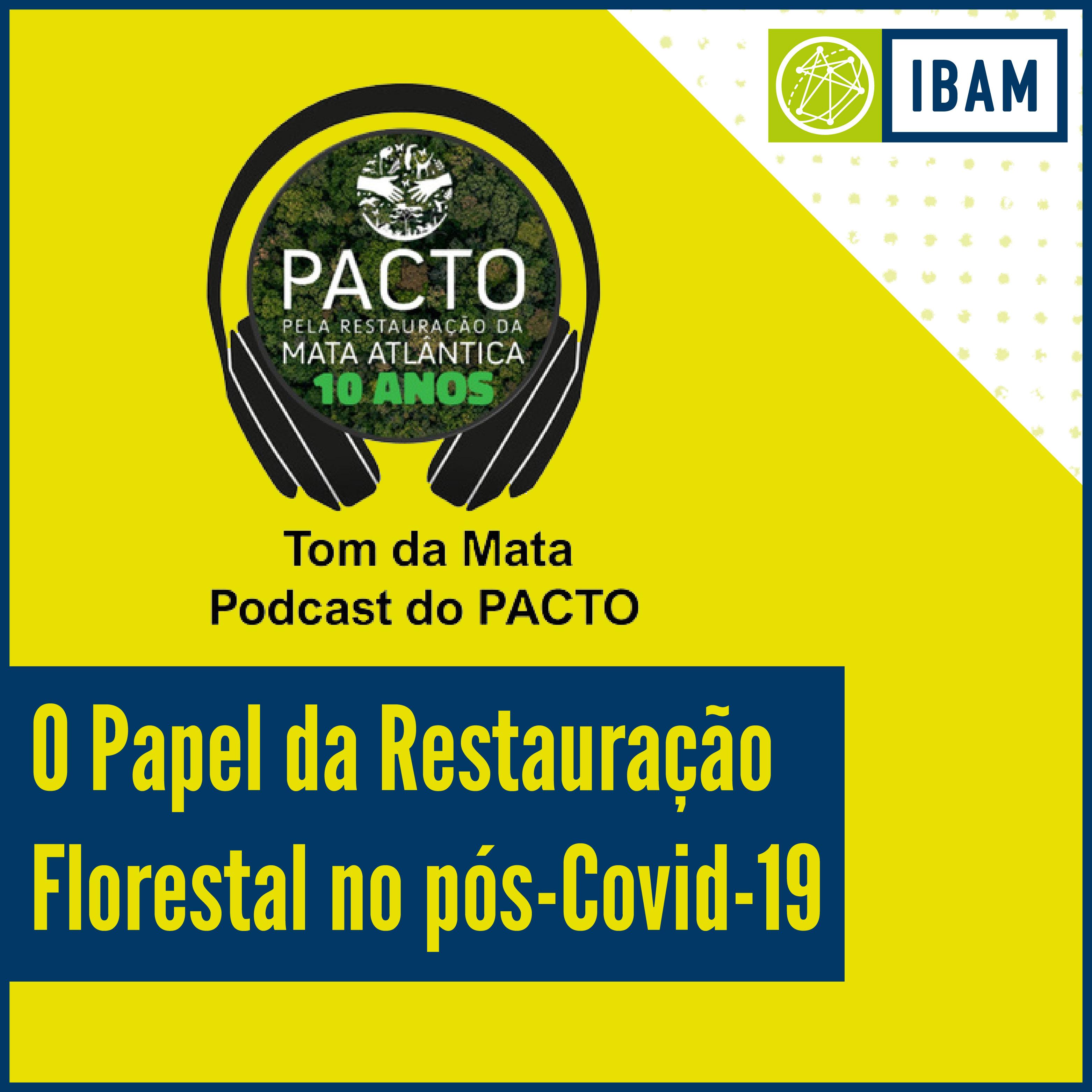 Restauração Florestal pós-Covid - IBAM